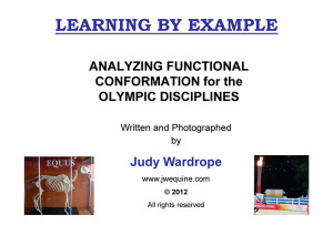 Analyzing Functional Conformation for the Olympic Disciplines